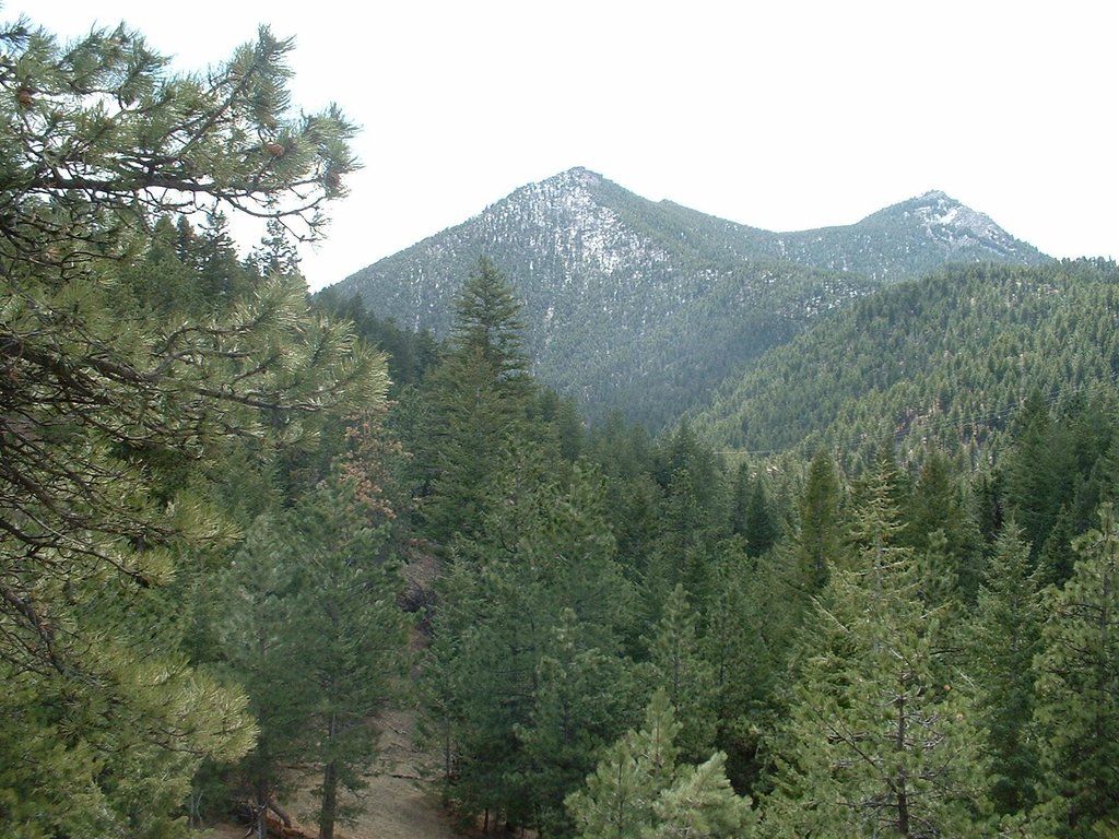 Bear Peak and South Boulder Peak