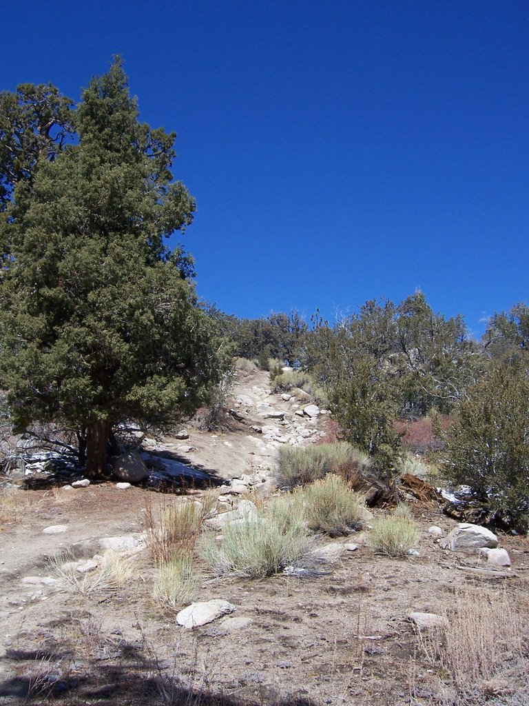 4wd route trailhead