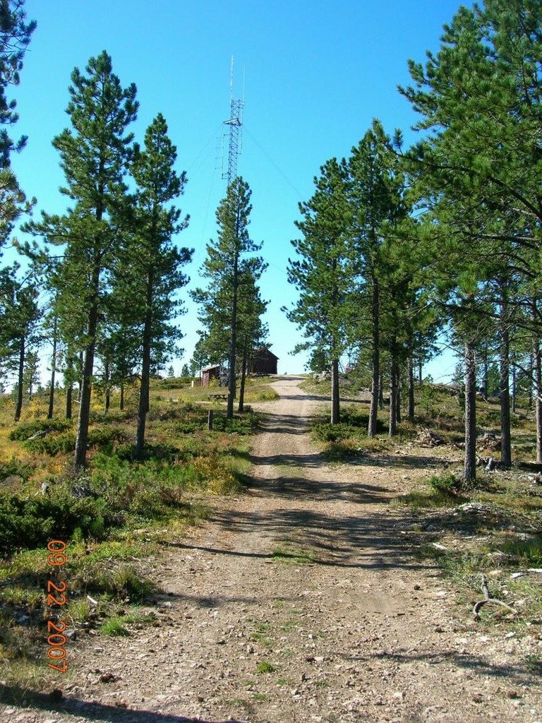 Trail Approach to Summit