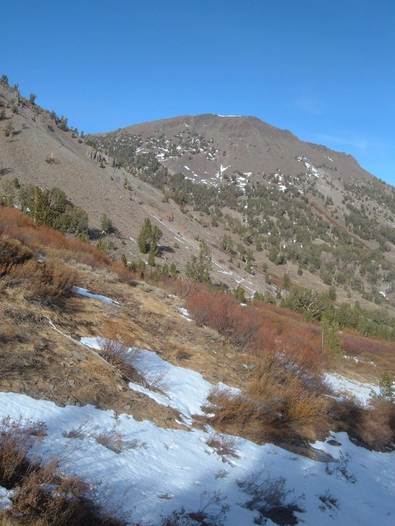 Looking back at Mount Rose