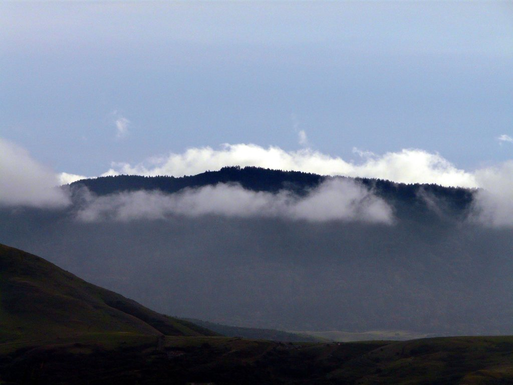 Coastal fog over Mt. Wittenberg