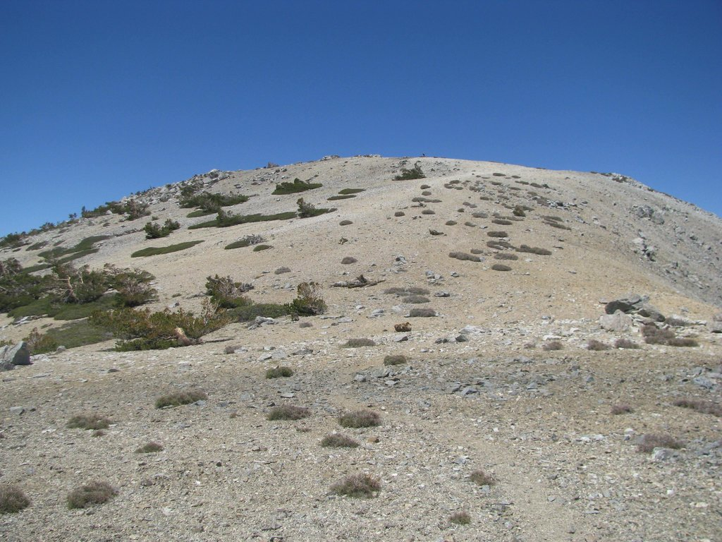 West Baldy from Saddle