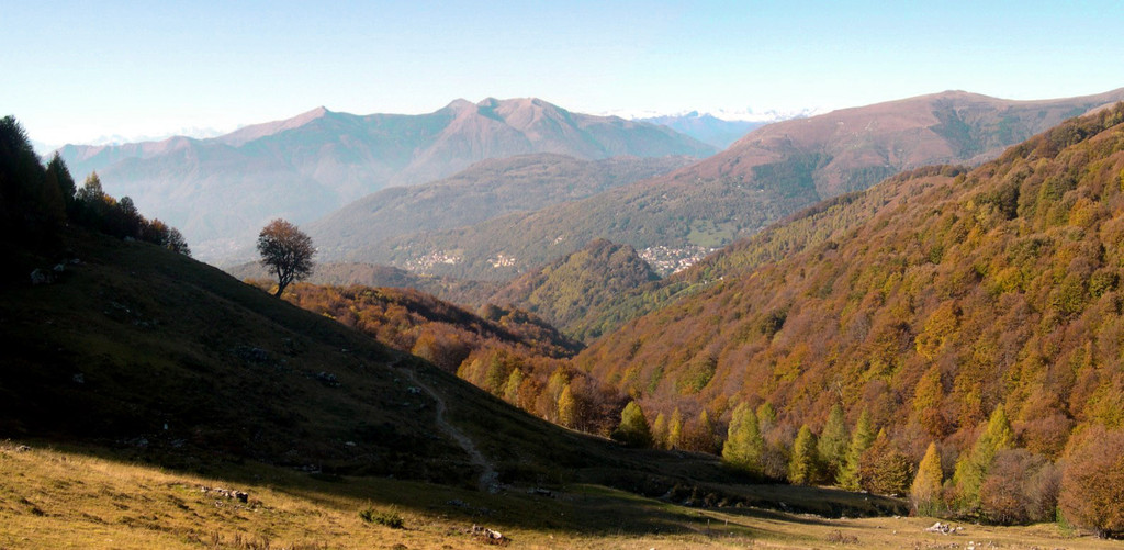 Fall in Val Colla