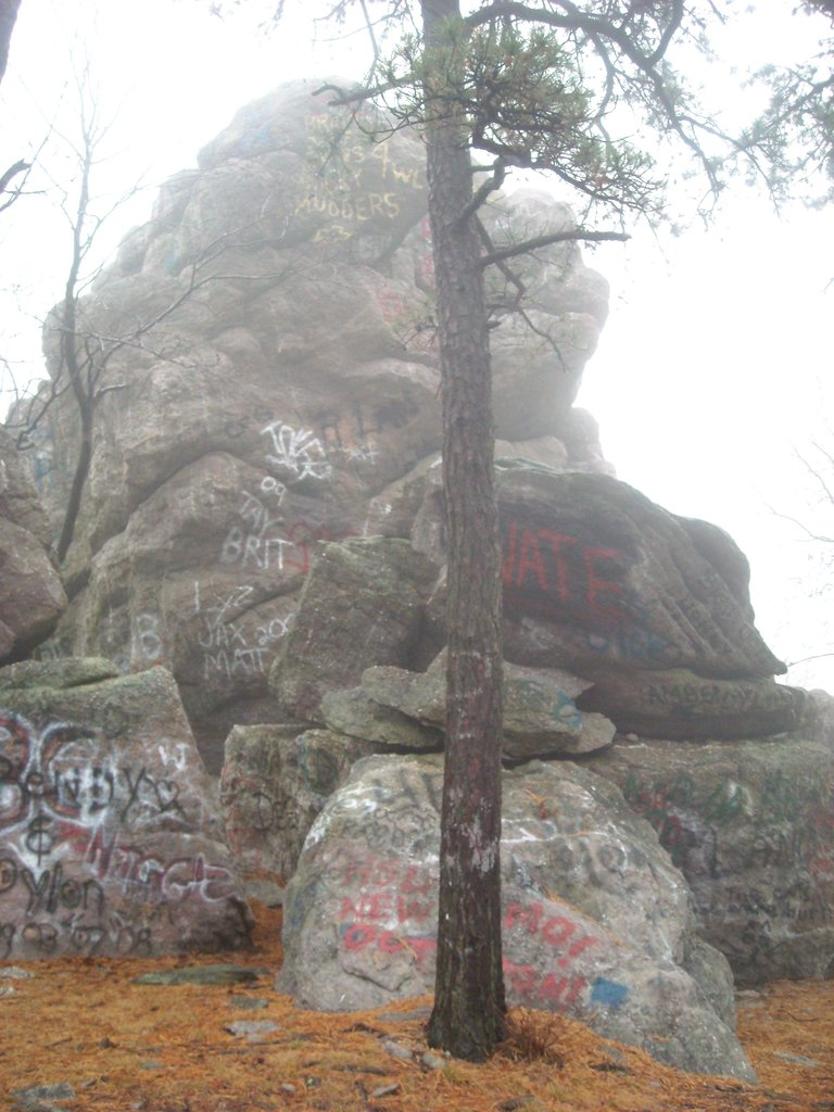 Great scenery ruined by graffiti
