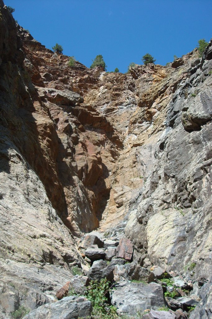 Overview of the gully