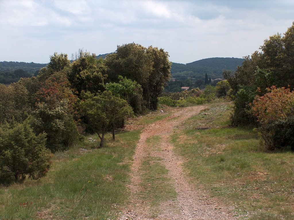 Trail to Pic Saint-Loup