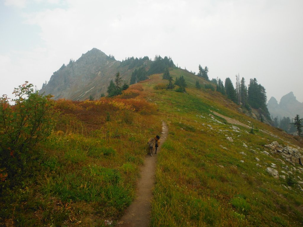 Alta Mountain trail