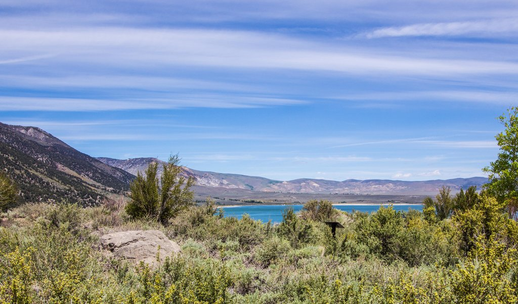 Beautiful view of Mono Lake