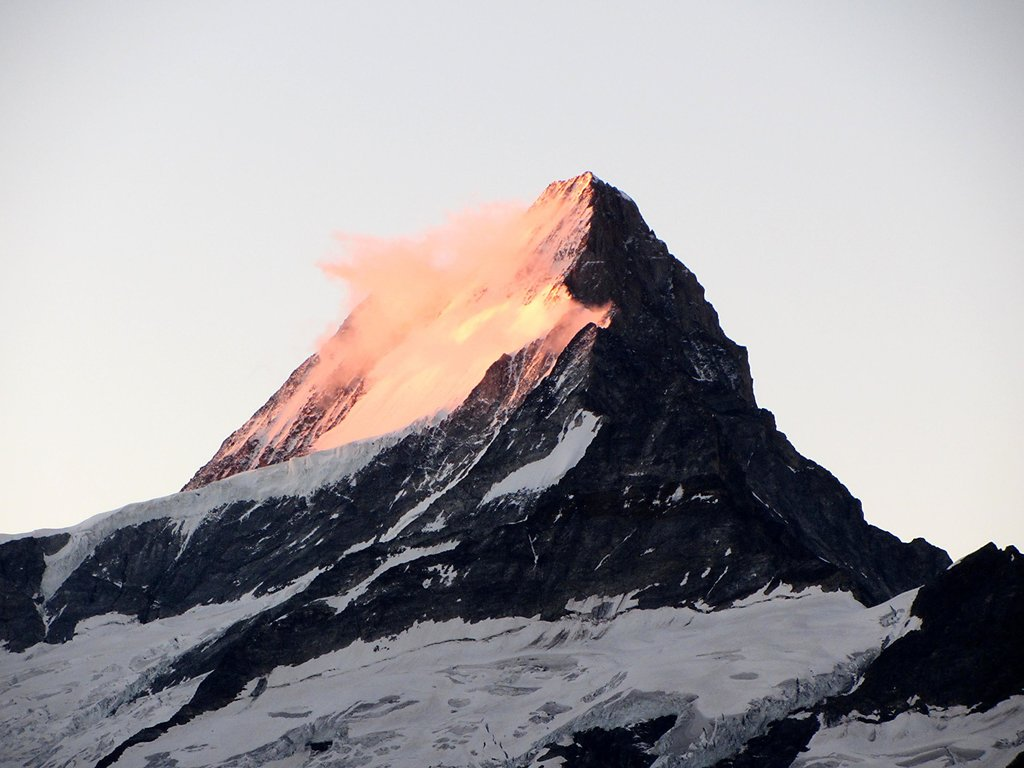 Schreckhorn at dawn