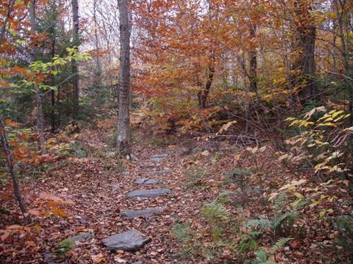 Stepping Stones on the Appalachian Trail