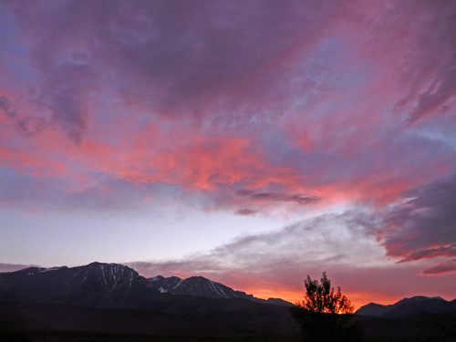 Sunset over Mono, Lee Vining Sierra