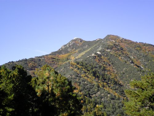 Mount Hopkins in Fall Colors