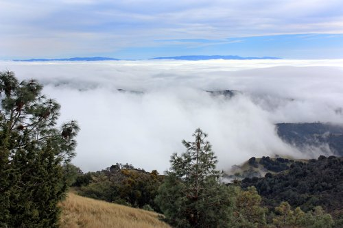 South from Mt. Diablo Summit Trail