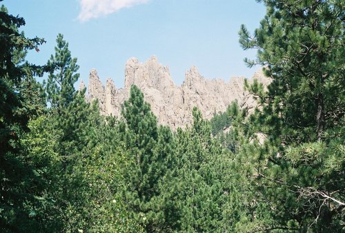 Needles of the Black Hills