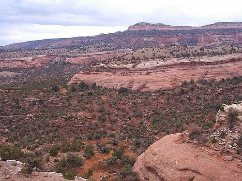 McInnis Canyons