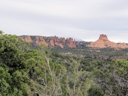 On Porcupine Rim Trail