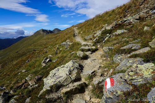 On Trail towards Sattelkopf