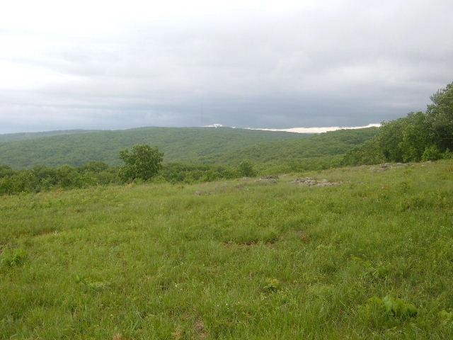 View from the near the high point of Missouri
