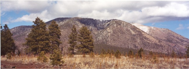 Mt. Elden from Buffalo Park