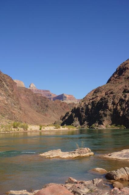 Colorado river from Pipe Creek Beach