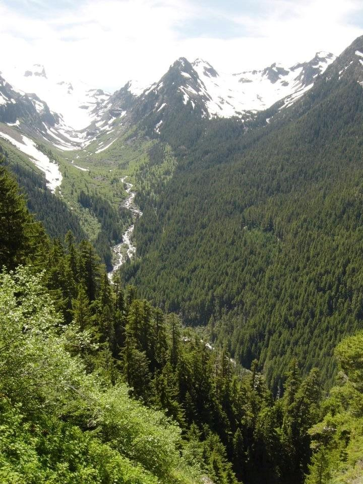 Glacier Creek Valley