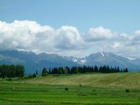 High Tatra seen from town of...