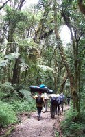 Machame Route Day 1